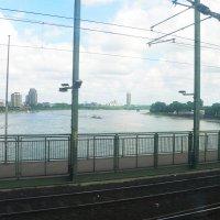 Рейн с железнодорожного моста :: Владимир Ростовский