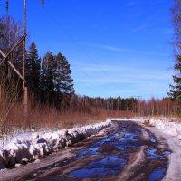 Голубые дороги весны :: Татьяна Ломтева