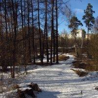 IMG_3845 - Просто март :: Андрей Лукьянов