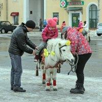 Северодвинск. Масленица. Подготовка к путешествию :: Владимир Шибинский