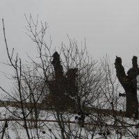 Дракон и две женщины :: Наталья Джикидзе (Берёзина)
