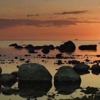 финский залив :: Maksim Telegin
