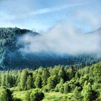 дорога в облака (из старенького) :: Евгений Фролов