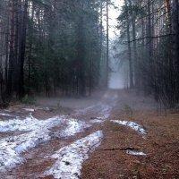 Рассветным светится туманом... :: Лесо-Вед (Баранов)
