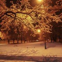 зимний вечер :: георгий  петькун
