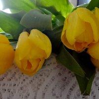 Праздничные тюльпаны! :: Ирина