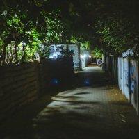 В ночи :: Alina Solovey