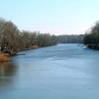 Река :: Elena Gaybura