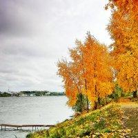 Осень :: олег фотограф-любитель