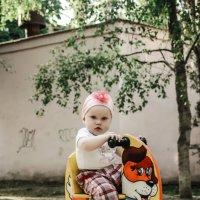 Девочка на качелях 5 :: Наталья Лесовая