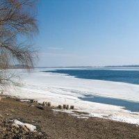Волга в марте :: Анатолий
