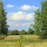 Летний пейзаж :: оля san-alondra