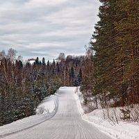 Зимняя дорога :: Татьяна Губина