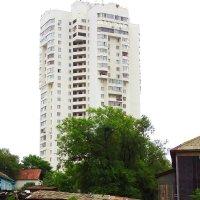 Процесс урбанизации :: Лариса Мироненко