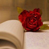 роза :: Grenka Клименко