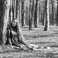 в тихом лесу..... :: Vitaliy Kononov