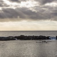North Shore Oahu :: Vita Farrar