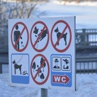 Ох уж эти запреты! :: Дмитрий Стрельников