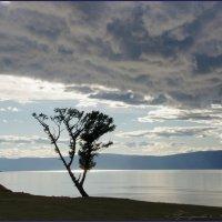 Страшное облако :: Наталия Григорьева