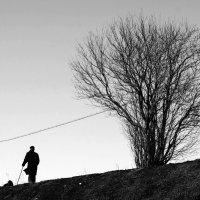 Человек , собака , дерево. :: сергей лебедев
