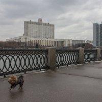 Непогода... :: Татьяна Копосова