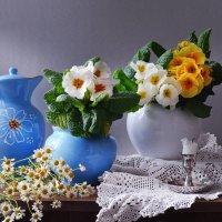 Молодость весны... :: Валентина Колова
