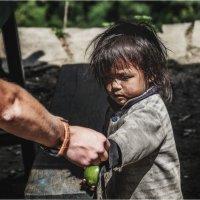 Высокогорный Непал(Гималаи) и дети... :: Александр Вивчарик
