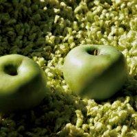 Green on green :: Дмитрий Земсков