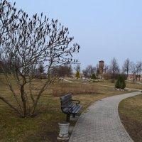 Весенний парк. :: zoja
