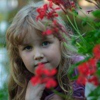 цветочки жизни нашей! :: Мила Карташова