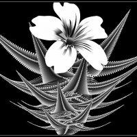***Экзотический цветок*** :: Юлия Z