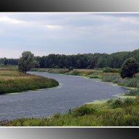 река Теша :: Евгений Садовский