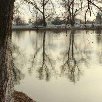 весенняя вода :: Александра