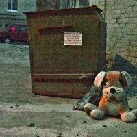 Когда друзей у мусорки бросают... :: Александр Резуненко