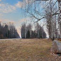 Камень  у  дороги... :: Валера39 Василевский.