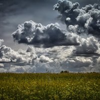 Облачно, возможны осадки... :: Александр Афромеев
