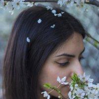 Чем пахнет весна? :: VAHE DILANCHYAN