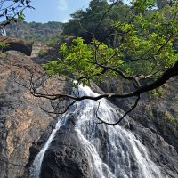 Индия. Карнатака. Водопад :: Владимир Шибинский