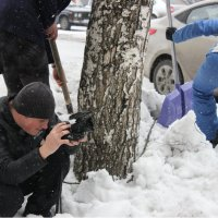 На борьбу со снежным пленом! :: Дарья Малькова