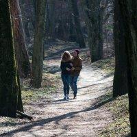 В весеннем лесу :: Александр Степовой