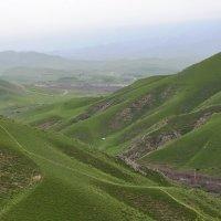 Зеленые холмы :: Aidar Атамамедов