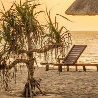 Вечерний пляж :: Elena Ignatova