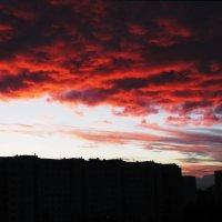 Закатные краски! :: Ирина Олехнович