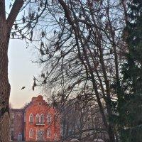 здание Адмиралтейства в Пушкине :: Елена