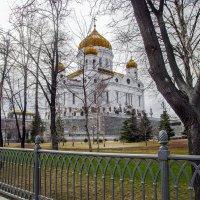 Ранняя весна... :: Ирина Шарапова