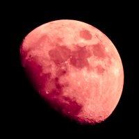 Луна :: Alexey Bogatkin