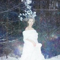 зимние сказки :: Лена Балашова