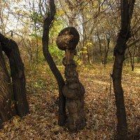 Чудеса природы: барышня на прогулке :: Николай Дони