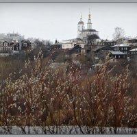 Взгляд с реки! :: Владимир Шошин