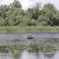 Рыбалка :: Алексей Климов